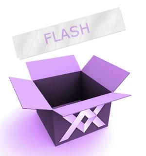 diseño web paquete premium - Adobe Flash