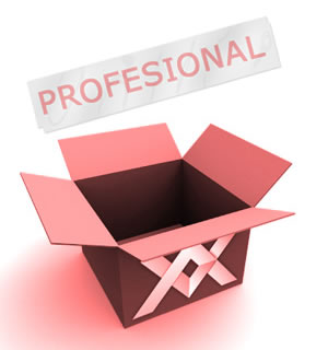 diseño web paquete profesional